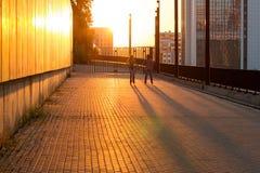 Пары rollerblading на заходе солнца Стоковая Фотография