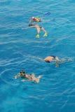 пары snorkeling стоковое изображение rf