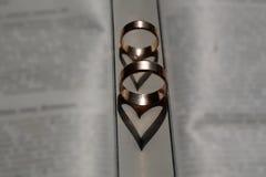 Пары wedding элегантные кольца Стоковое Фото