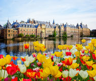 парламент Нидерландов haag вертепа голландский Стоковая Фотография