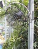 Пар вентилятора Стоковые Изображения RF