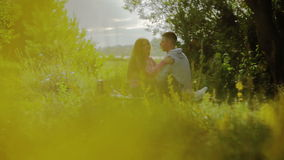 пар влюбленности детеныши outdoors сток-видео