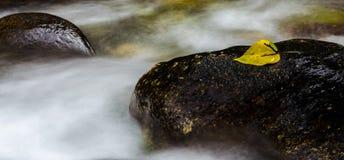 Пар горы Стоковые Изображения RF
