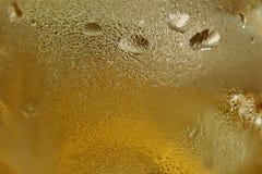 Пар конца-вверх холодный на стекле пива холодный s Стоковая Фотография RF
