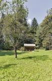 Пасека с крапивницами в горах Словении стоковое изображение rf