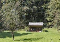 Пасека с крапивницами в горах Словении стоковое изображение