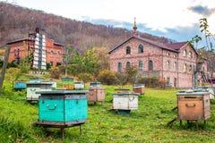 Пасека с ульями монастыря серафимов St стоковое фото rf