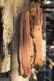 Пасма шерстей Стоковое фото RF