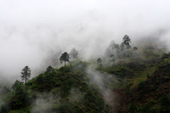 пасмурная гора Стоковое Изображение RF