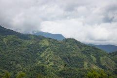 пасмурная долина горы Стоковые Фото