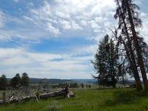 Пасмурная долина Стоковое фото RF