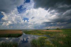 Пасмурное небо над болотоами Стоковые Изображения RF
