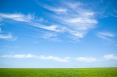 пасмурное небо травы Стоковые Фото