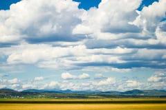 пасмурное небо стоковое изображение