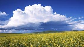 пасмурное небо Стоковые Фотографии RF
