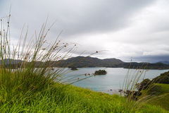 Пасмурное утро в заливе островов, Новая Зеландия Стоковое Фото