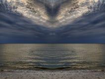 Пасмурное peacebird, Балтийское море стоковые изображения rf