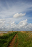 пасмурные небеса путя вниз Стоковое Фото