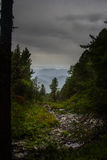 Пасмурный ландшафт с соснами долиной и силуэтом гор Стоковая Фотография RF