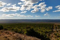 Пасмурный взглядов ландшафт Addo вне - Стоковые Фотографии RF