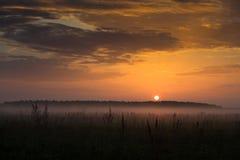 пасмурный восход солнца Стоковые Фото