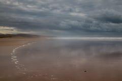 Пасмурный день на береге океана Стоковое Изображение