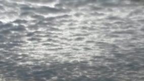 пасмурный день Стоковые Фото
