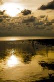 Пасмурный заход солнца, золотые моря отражает Стоковые Фотографии RF