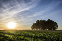 Пасмурный заход солнца сельской местности в полях Стоковая Фотография