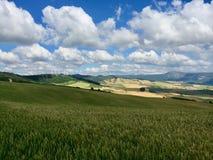 Пасмурный ландшафт на севере Испании стоковая фотография rf