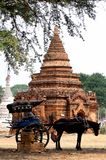 Пассажиры вычерченного экипажа дома ждать на виске в Bagan, Мьянме стоковая фотография rf