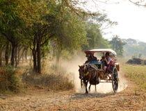Пассажиры нося тележки лошади на сельской дороге в Bagan, Мьянме Стоковые Фотографии RF
