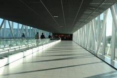 Пассажиры с багажом на авиапорте Schipol стоковые изображения rf