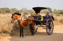 Пассажиры тележки лошади ждать в Bagan, Мьянме Стоковые Изображения