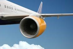 пассажир самолета Стоковые Изображения RF
