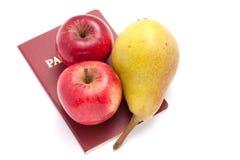 пасспорт здоровья к Стоковые Фотографии RF