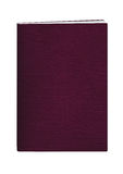 пасспорт burgundy книги Стоковые Изображения