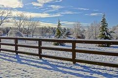 Пастбищные угодья в снеге Стоковое Фото