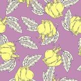 Пастельная желтых картина роз и листьев whiite также вектор иллюстрации притяжки corel иллюстрация штока