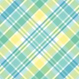 пастельная шотландка Стоковая Фотография