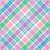 пастельная шотландка Стоковые Изображения
