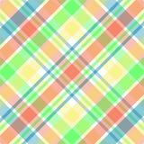 пастельная шотландка Стоковое Изображение