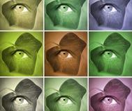 Пастельные краски Стоковая Фотография RF