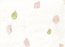 пастель покрашенная листьями бумажная Стоковые Изображения