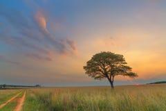 Пастельные цвета захода солнца Стоковое Изображение RF