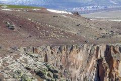 Пасти овец в горах индюк Стоковое Изображение RF