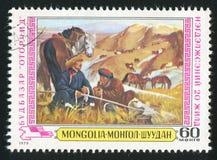 Пастухи и лошади стоковые фотографии rf