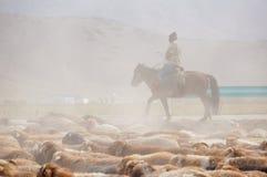 Пастухи казаха в Синьцзян стоковое изображение rf