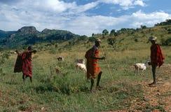 Пастухи скотин Karamojong, Уганда стоковые изображения