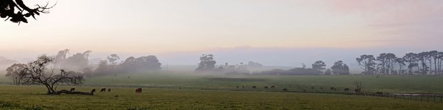 Пастырская панорама фермы Стоковое Изображение RF